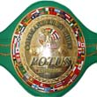 the POTUS belt